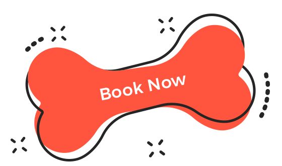 https://paw-paw.net/wp-content/uploads/2019/08/book_now.png
